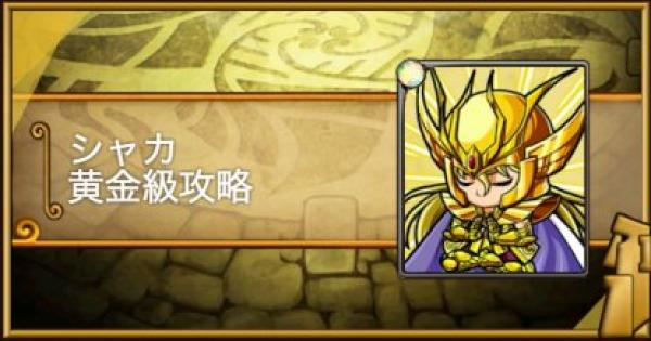 【ポコダン】シャカ黄金級攻略|黄金十二宮【ポコロンダンジョンズ】