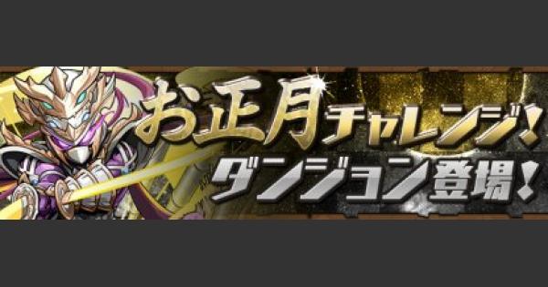 お正月チャレンジ【2】の攻略パーティと出現モンスター