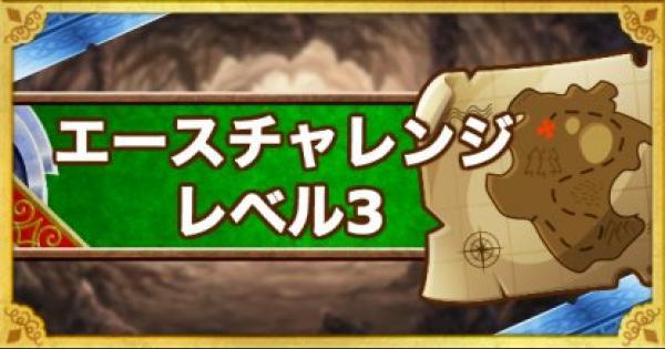 【DQMSL】「エースチャレンジ レベル3」攻略!物質縛りのクリア方法!