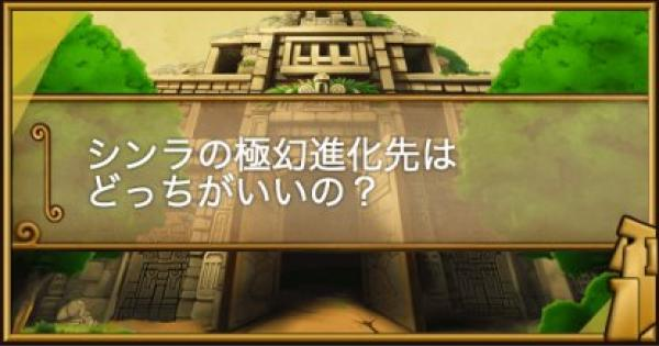 【ポコダン】シンラの極幻進化はどっちがいい?【ポコロンダンジョンズ】