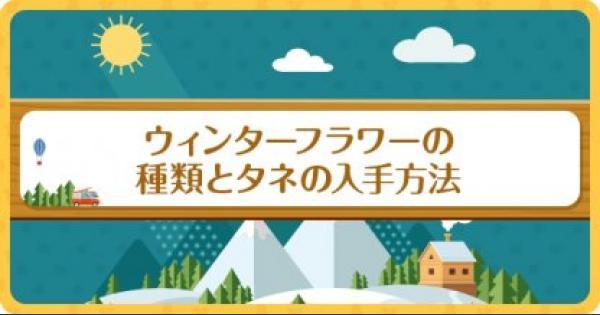【ポケ森】ウィンターフラワーの種類とタネの入手方法【どうぶつの森(どう森)】