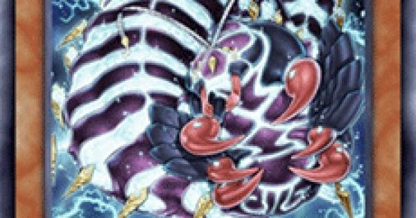 【遊戯王デュエルリンクス】武神器-ハチの評価と入手方法