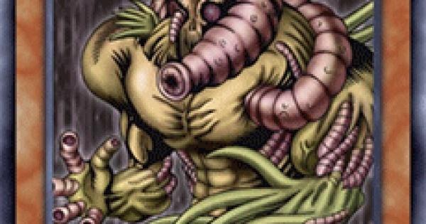 【遊戯王デュエルリンクス】邪悪なるワームビーストの評価と入手方法