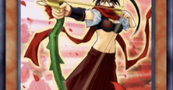 【遊戯王デュエルリンクス】薔薇の聖弓手の評価と入手方法