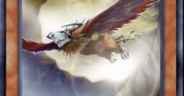 【遊戯王デュエルリンクス】霞の谷の大怪鳥の評価と入手方法