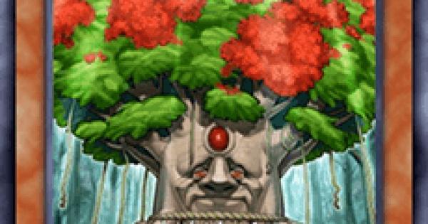 【遊戯王デュエルリンクス】森羅の仙樹レギアの評価と入手方法