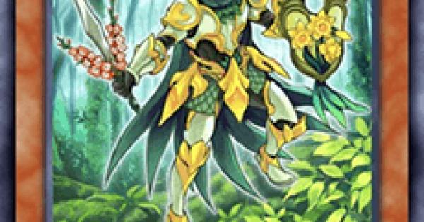 【遊戯王デュエルリンクス】森羅の花卉士 ナルサスの評価と入手方法