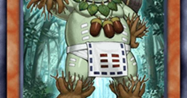 【遊戯王デュエルリンクス】森羅の番人オークの評価と入手方法