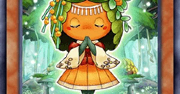 【遊戯王デュエルリンクス】森羅の蜜柑子シトラの評価と入手方法