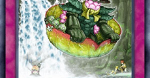 【遊戯王デュエルリンクス】森羅の滝滑りの評価と入手方法
