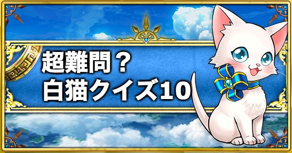 【白猫】目指せ全問正解!白猫クイズ10問!