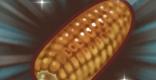 ローストコーンのレシピ情報
