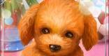 クリスティナSSR1の評価と性能 | 天使の聖犬