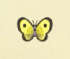 Yellow butterfly