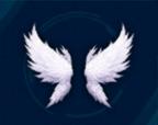 神の使い翼・バック