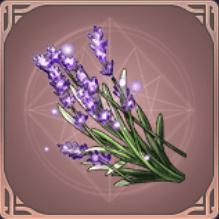 パクトの花のアイコン