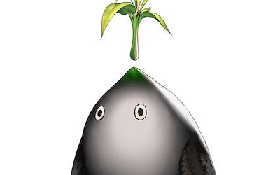 緑羽チョロン