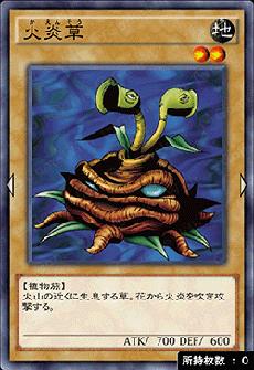 火炎草のアイコン