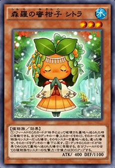 森羅の蜜柑子シトラのアイコン
