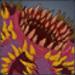 怪魔系のアイコン