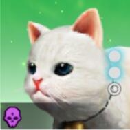 大粒白猫のアイコン