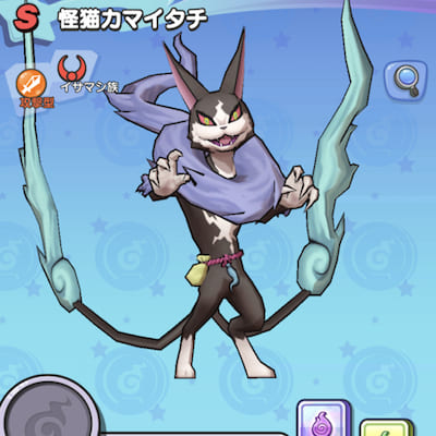 怪猫カマイタチ画像