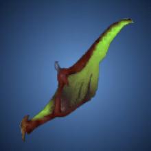 大空竜の翼手