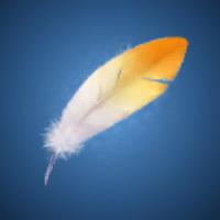 黄金の羽根のイラスト