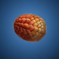 業火竜の卵