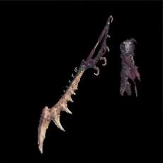 ハザクグローサの画像