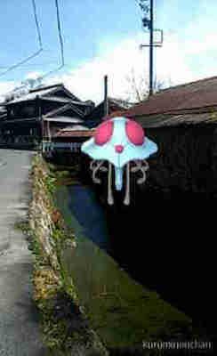ドククラゲのAR画像