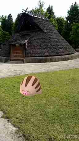 ウリムーのAR画像