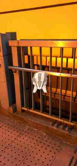 マッスグマのAR画像