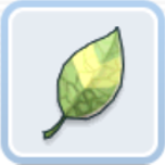 変身木の葉