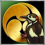 啄木鳥戦法