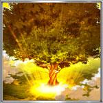 大義の聖木アイコン