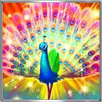 孔雀の舞アイコン