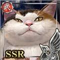 [胴丸巨猫]寺玖洲