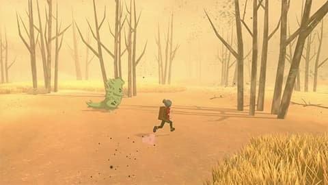 ワイルドエリア砂地のイメージ